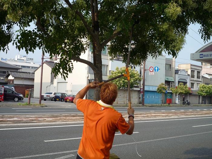 枝の間をとおして。。。。 :
